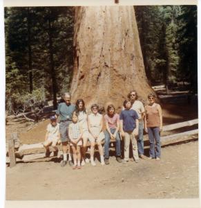 Yosemite1971